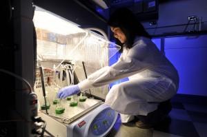 Lara Jazmin recently earned her Ph.D. in chemical and biomolecular engineering and is launching MetaMap BioWorks. (John Russell/Vanderbilt University)